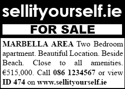 Classified Advert with Sellityourself branding